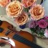 【新型ウイルスで自宅でできる趣味 バイオリン 今だからこそ楽器演奏をはじめませんか?】