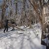 冬の国見遊山2013 白い稜線