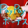 【PayPay】12月の還元分のボーナス付与を開始し、キャンペーン第二弾投下か!?ポイントが取消になる人も
