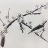 鶯と梅 水墨画