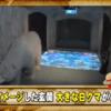 尾田栄一郎さんの自宅、仕事部屋が凄すぎる