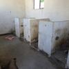 世界一周 新疆ウイグル自治区 おまけ編・中国のトイレ