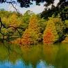 江汐湖(山口県山陽小野田)