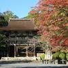西国十四番札所「三井寺」部分紅葉