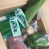 【ふるさと納税】奈半利「ちょこっと野菜」6月分