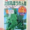 真冬に「ホウレンソウ」を水耕栽培。数少ない冬蒔きができる野菜です