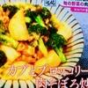 笠原将弘 カブとブロッコリーの肉そぼろ炒め ノンストップ 2017/1/24