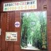 豚生姜焼(おまけ19) 食事処・酒処「わが家2」で「しょうが焼き定食」 650円