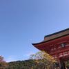 京都へ旅行に行ったらココ!私がオススメする観光スポット11選