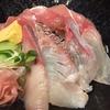【近畿大学水産研究所】希少なクロマグロを手軽に味わえる【銀座】
