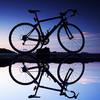 結論、自転車は楽しいでおK?