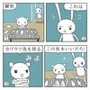 獺祭魚(だっさいぎょ)