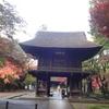 埼玉紅葉ランキング1位(全国6位)の平林寺にリベンジしました!