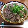 【今週のうどん12】 千とせ (大阪・難波) 肉うどん