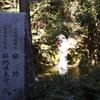 寂地山〜滝と満開のカタクリロード