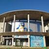 【開催のお知らせ】ペンギンマルシェ2021春✨✨4月24·25日
