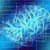 人工知能で明るい未来が訪れて欲しい!