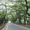 栃木県における孤立死防止「とちまる見守りネット」に注目!