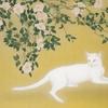 日本画の杜   第三章 「椿下白猫」 2016・9