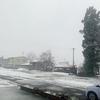 雪の大晦日 in AKITA