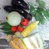 私、野菜はスーパーで買いません(極力)!農家さんとの直接交渉で闇取引(?)を実現!