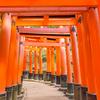 2016年末一人旅 第三週(123)京都伏見稲荷その3