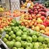 ロシアのりんごはシャキッとりんごとしなしなりんご。