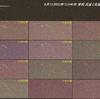 流星痕 ペルセウス座流星群 8月13日未明