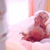 【不妊治療】フランスで不妊治療を始める②卵管造影検査