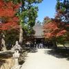 【岩手】毛越寺 常行堂 - リボン風飾りがかわいい印象の宝冠阿弥陀如来