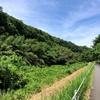 印旛放水路・花見川を歩く(2) 花見川大橋から大和田機場