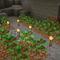 地下植林場のススメ。木が育たないときのチェックポイントも