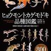 ヒョウモントカゲモドキの品種写真800点公開図鑑