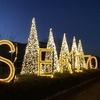 12月4日のブログ「100歳のお祝い訪問、シティターミナルのイルミネーション点灯式」