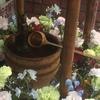 花まつり〜観音様の甘茶掛け🌸