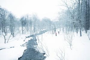 冬の裏磐梯 リコーGRⅡ #風景写真女子部