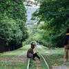 初夏の京都を歩いてきた(南禅寺・永観堂・ブルーボトルコーヒー)