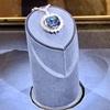 DC観光➁🇺🇸 スミソニアン自然史博物館で、呪いのダイヤモンドを