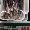 """""""キトビロ""""の季節がやってきた""""行者ニンニク"""" """"アイヌネギ"""""""