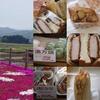 「なかうみの里」の芝桜を見に、お手軽行楽弁当