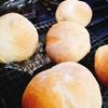 いびつなSiriパンとマダム