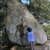 武田山登りました(その3)御守岩、見守ってくれています。