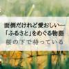 『桜の下で待っている』面倒だけど愛おしい「ふるさと」をめぐる物語