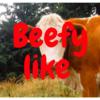 【HIPHOP】みんな覚えてる?KjとZeebraのビーフ?ぽいやつ【BEEF】