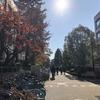SSK (Sunny-Side of Kyoto)(+261/626)