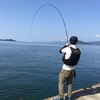 【八幡浜】ボーダレス&カーディフで狙う、夏の真鯛ゲーム