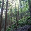 天河神社とその周辺へ超特急の旅(2)~天川村と丹生川上神社下社編