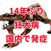 狂犬病が国内で14年ぶりに発症、愛知県