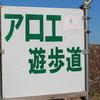 圧倒的なスケール ~伊豆下田 アロエの花まつり 【その2】