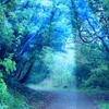 セカンドキャリアへの旅路(33)行動の源泉にある痛みの癒やし